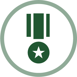 image of medal bravery icon