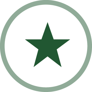 image of a star - hope and optimism icon