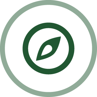 image of an eye - integrity icon