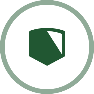 image of a shield - leadership icon
