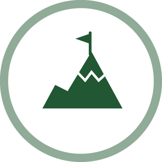 image of a mountain - perseverance icon