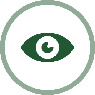 image of an eye - perspective icon