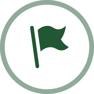 image of a flag - teamwork and citizenship icon